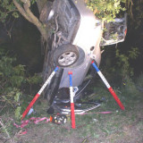 Car In A Tree