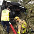 Rollover Crash into Tree Line