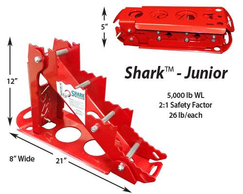 SRK-Jr-Slide6