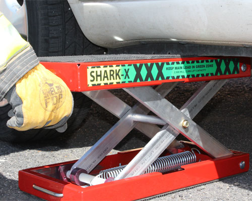 Shark X Cribbing